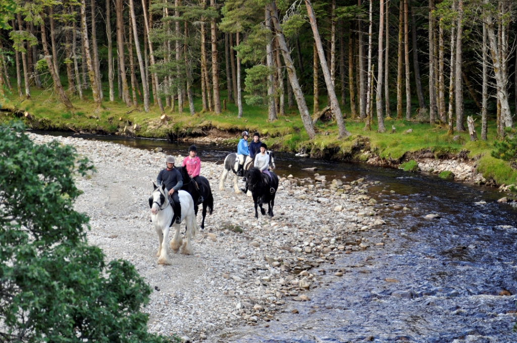 Riding along the river in Keenagh Woods, part of the Mulranny Mountain Trail